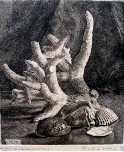 Leonardo Castellani, Frutti di Mare