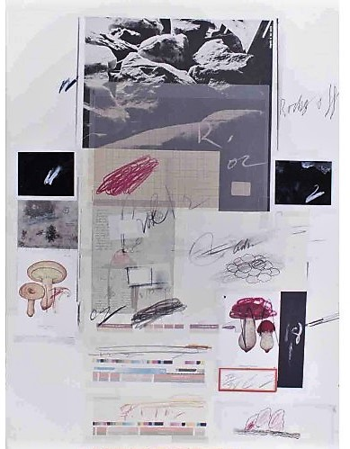 Cy Twombly Natural History, Part 1, Mushrooms n. X