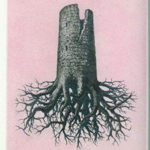 René Magritte, La Folie Almayer ou l'Arbre Rose
