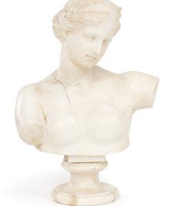 78020_Busto femminile alabastro